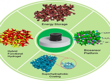 Multifunctional Nanostructured Conductive Polymers