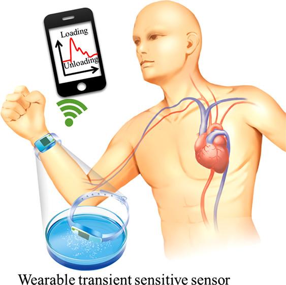 TOC nl sensor